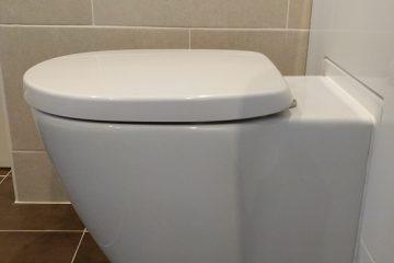 inset toilet