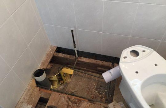 toiletcrop1