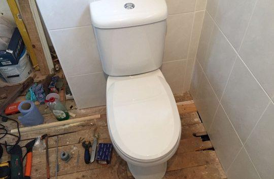 toiletcrop2